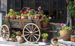 old traditional bulgarian wagon with Flowers in Veliko Tarnovo Bulgaria