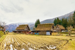 Old traditional gassho-zukuri thatched-roof farmhouses by the rice field at Ainokura village in Gokayama region, Japan.
