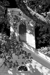 Old Traditional Rural Church Steeple, Tree Branches and Shadows in black and white.