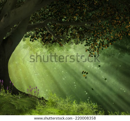 Old tree in a forest with rays of lights illuminating the scene