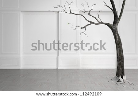 Old tree with falling leaves in a white room. With one remaining green leaf.