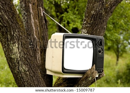 Old TV on tree. Metaphor for all around television.