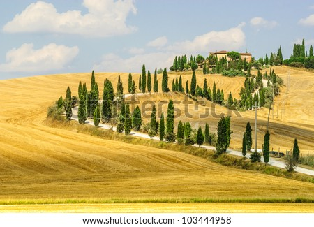 Old typical farm in Val d'Orcia (Tuscany, Italy) with yellow fields and winding road