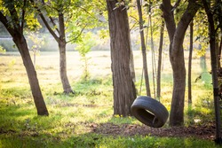 Old tyre swing hanging with a chain in a wood in summer or autumn in a kids playground. This swing is made of a recycle tire wheel of rubber.