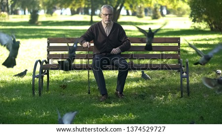 Old upset male banishing flock of pigeons in park, loneliness and retirement #1374529727