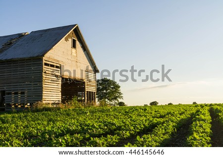 Old vintage Midwest barn in the open field on a Summer's afternoon.  Peru, Illinois, U.S.A..