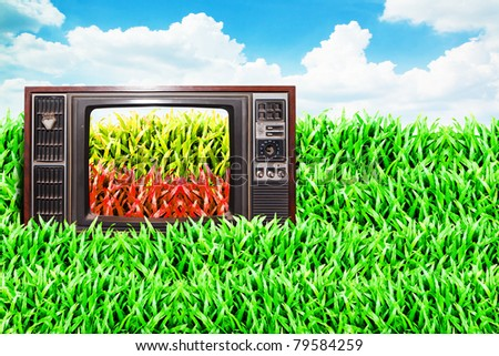 old vintage TV on the Grass field and cloudy sky background