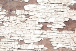 Old vintage wood texture with badly cracked paint