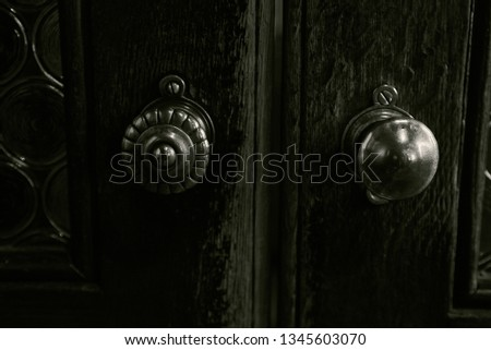 old vintage wooden door with ornament in an old castle