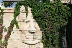 old wall with face sculpture and ivy looking like hair. street decoration. giant monumental human face on stone wall. travel and sightseeing.