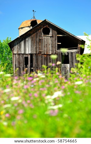 old weathered barn among field of wildflowers in New York State