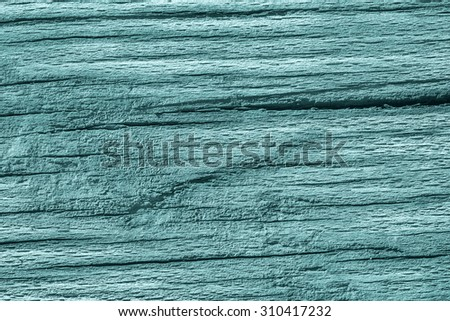 Old Weathered, Rotten, Cracked Wood, Bleached and Stained Cyan, Grunge Surface Texture Detail. #310417232
