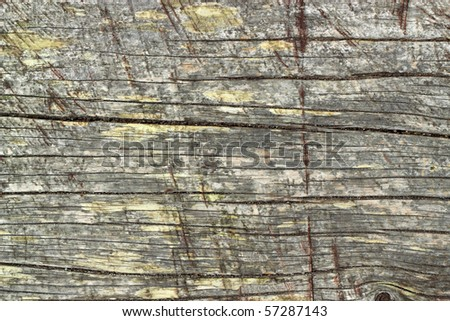Old weathered wood texture natural abstract. - stock photo