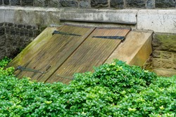 old weathered wooden bulkhead cellar doors with large black hinges in a garden