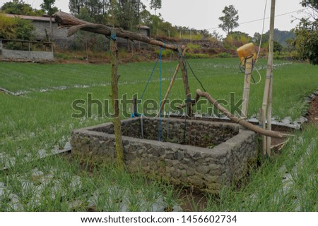 Old well with winch in the middle of an onion field. Wall wells made of stones and mortar. Source of water for irrigation of poor farmers' agricultural crops in the mountains.