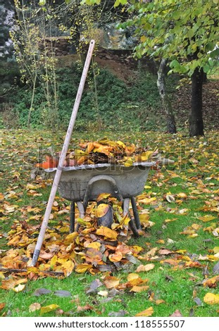 Old wheelbarrow filled with dead leaves in a garden