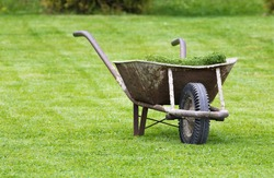 Old wheelbarrow on a lawn with fresh grass clippings in summer