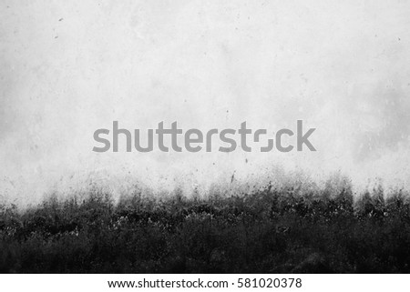 old white wall with mold #581020378