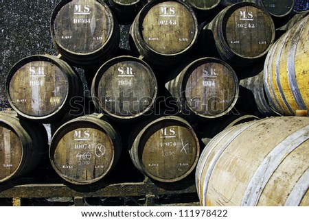 Old wine barrels in a wine cellar