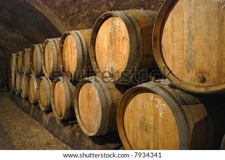 Old wine barrels in the cave of a wine castle