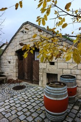 Old wine cellar with two barrels of wine, Austria