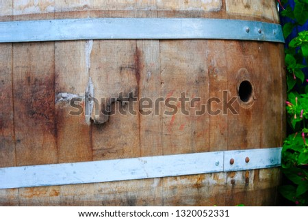 old wodden barrel in the alley of the grassy palm bay in Sissi on the mediterranean island Crete in Greece