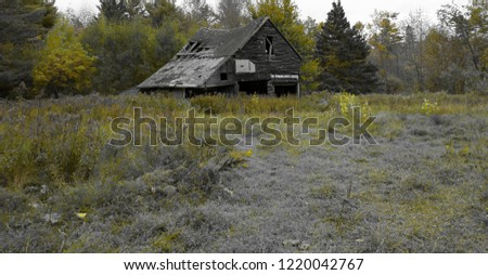 Old Wood Barn in a grass field with only yellow green color highlighted