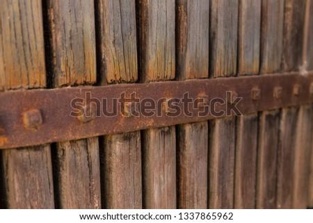 Old wood in Castilla la Mancha, Spain.