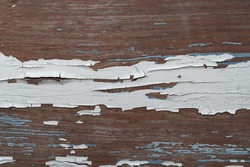 old wood surface covered with falling off white paint, close-up. Cover. Web banner. Autumn season, October.