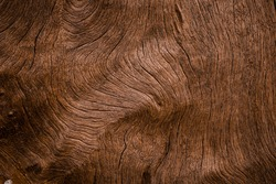 Old wood surface with natural patterns