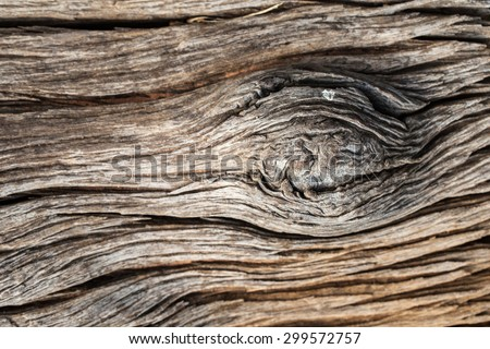 Old wood texture. Abstract background #299572757