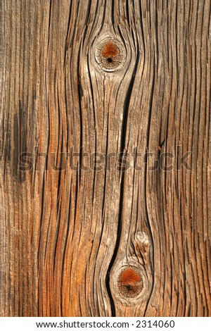 Old wood - texture, background - stock photo