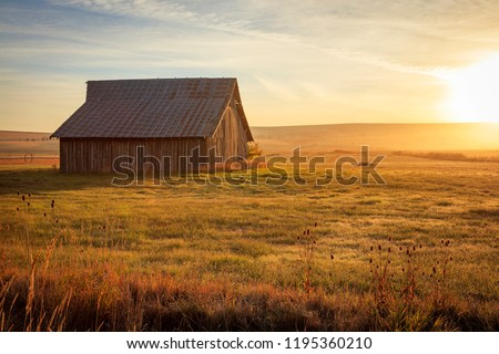 Old wooden barn in rural Oregon, USA. #1195360210