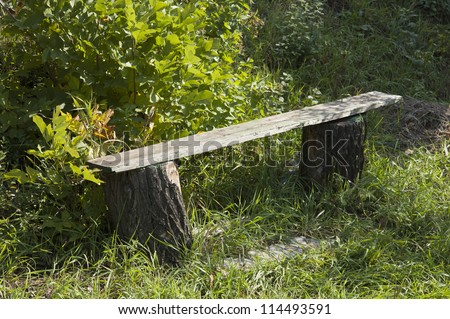 old wooden bench at shrubs