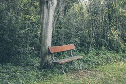 Old wooden bench in a beautiful garden in vintage style.