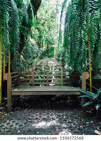 old wooden bench in the garden. ...