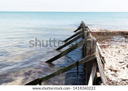 Old wooden breakwater on the beach #1418360222