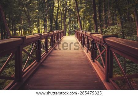 old wooden bridge in  deep...