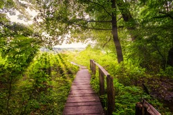 Old wooden bridge in forest and bright sunbeams at sunrise