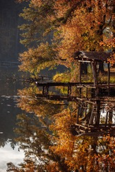old wooden bridge on the lake in autumn. Wooden bridge on the lake. leaves floating in the water, autumn, bridge of logs, platform for fishermen