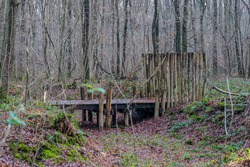Old wooden bridge over a dry stream leading to what was a farmyard in the late Middle Ages, bare trees in the Schinveldse forest, Dutch nature reserve, winter day in South Limburg in the Netherlands
