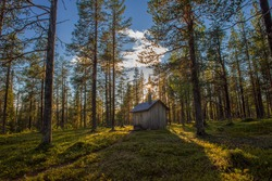 old wooden cabin in the forest