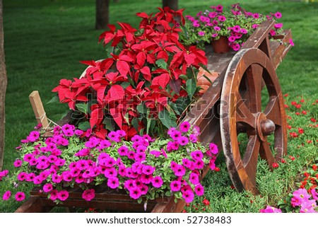 Old wooden cart full of colorful flowers