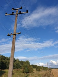 Old wooden electric pole with wires used for electricity traffic. Pictured in the agriculture wild fields of farm land.