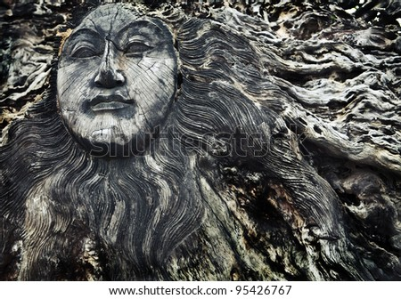 old wooden face on roots  ...