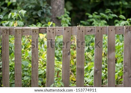 old wooden fence on the nature