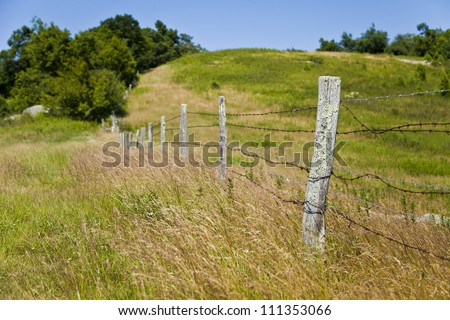 Old wooden fence posts wrapped with barb wire fence. The grass has grown up tall all around.  This is a quick and easy fence to put up to keep livestock from roaming around.