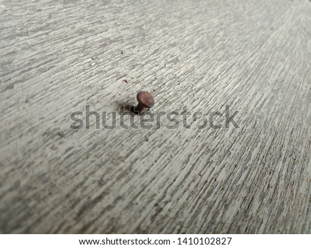 An Old Rust Nail On Wooden Floor Free Images And Photos Avopixcom