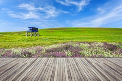 Old wooden flooring and view of nature, outdoor concept