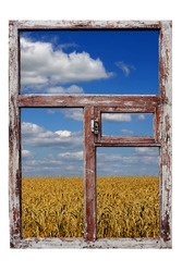 old wooden frame, wheat field and the blue sky